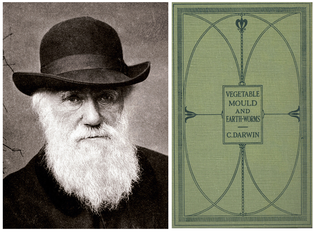 This image has an empty alt attribute; its file name is darwinandbook.jpg